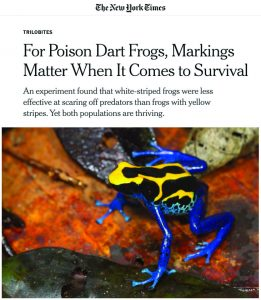 New York Times article on Poison Dart Frogs