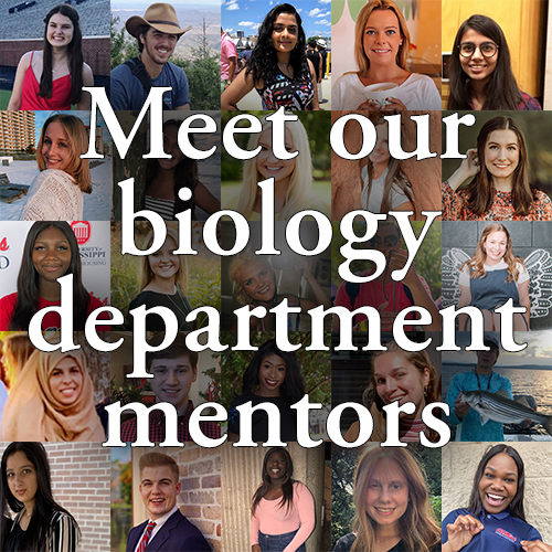 Meet our biology department mentors