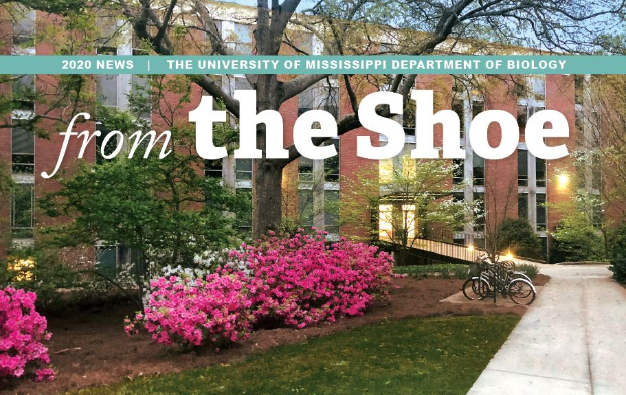 PDF download of From the Shoe - 2020 News - The University of Mississippi Department of Biology