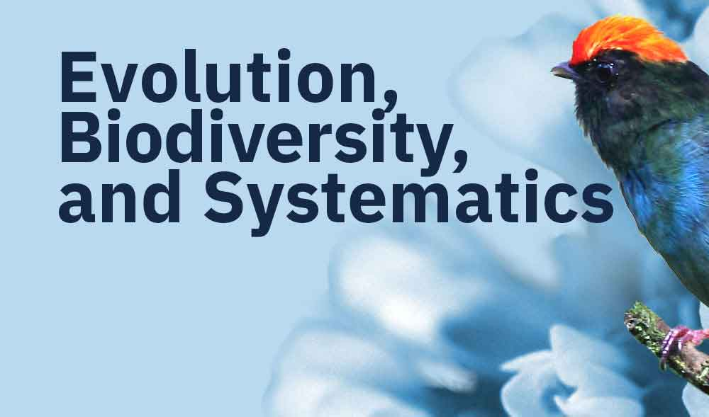 Evolution, Biodiversity, and Systematics